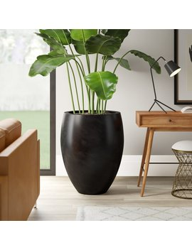 Sheller Fiberglass Pot Planter by Mercury Row