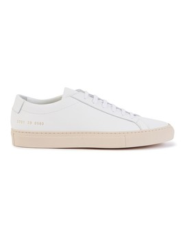 Sneakers Achille by Common Projects