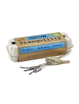Balance & Tranquility Grow Kit by Uncommon Goods