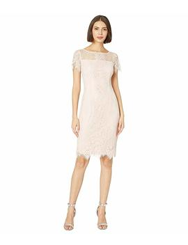 Point D'espirit Lace Sheath Dress by Adrianna Papell