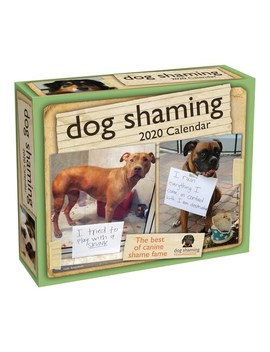 Andrews & Mc Meel Dog Shaming 2020 Day To Day Calendar by Andrews & Mcmeel