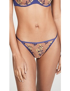 Obsession Thong by Natori