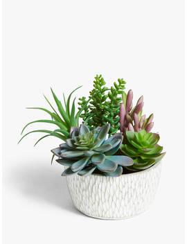 John Lewis & Partners Artificial Garden Succulent Selection by John Lewis & Partners