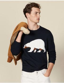 Sweater With Jacquard Bear by Sandro Paris