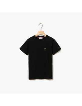 T Shirt Decote Redondo Menino Em Jersey De Algodão by Lacoste