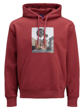 Graphic Long Sleeve Hoodie by Jack & Jones
