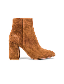 Therese Bootie In Brown Suede by Steve Madden