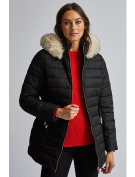 Dorothy Perkins Short Luxe Padded Jacket by Next