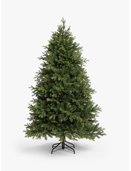 John Lewis & Partners Brunswick Spruce Unlit Christmas Tree, 6ft by John Lewis & Partners