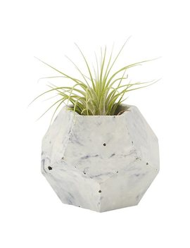 Homebody Collective Dodecahedron Planter Pot White And Black Marble by Homebody Collective