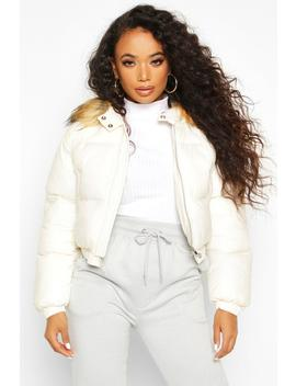 Petite Cropped Padded Jacket by Boohoo