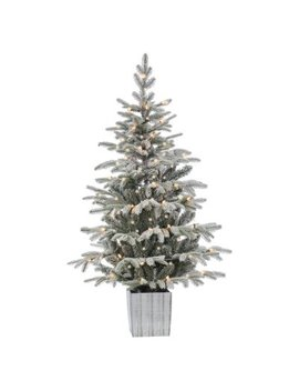 Sterling Tree Company Lightly Flocked Medium Pre Lit Potted Christmas Tree by Sterling Tree Company