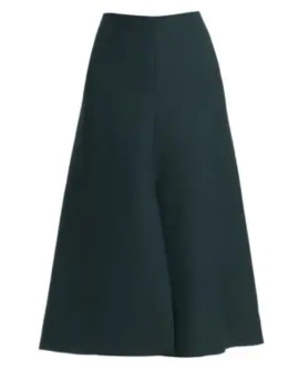 Bea Wool & Silk A Line Front Pleat Skirt by The Row