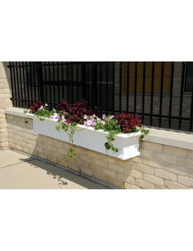 White Yorkshire 1 Piece Self Watering Vinyl Window Box Planter by Mayne Inc.
