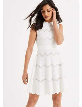Filicia Knitted Dress by Phase Eight