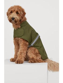 Koiran Sadetakki by H&M