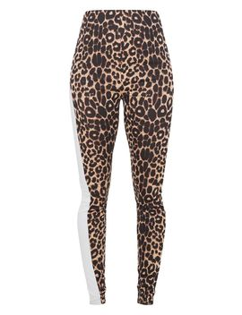 Leopard Side Stripe Leggings by Prettylittlething