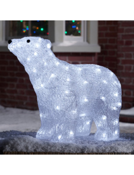 Polar Bear Light Feature   Arctic White by Winter Wonderland