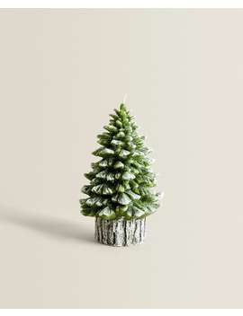 Green Pine Tree Candle  Candles   Decoration   Living Room by Zara Home