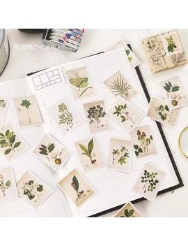 Plant Stamp Sticker Pack Stickers Cute Stickers Watercolor Stickers Planner Stickers Gift For Her Laptop Stickers Best Friend Gift by Etsy