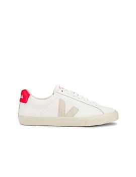 Pekin Sneaker by Veja