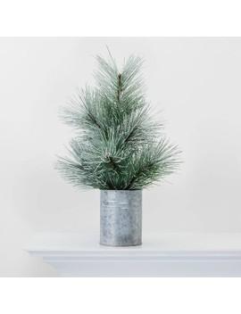 Bushy Flocked Tree In Galvanized Tin Decorative Figurine   Wondershop™ by Shop This Collection