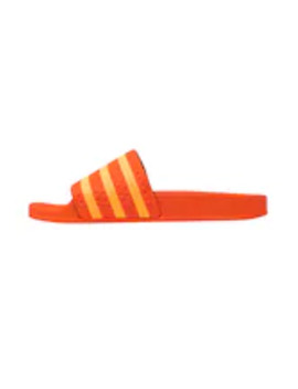 Adilette   Klapki by Adidas Originals