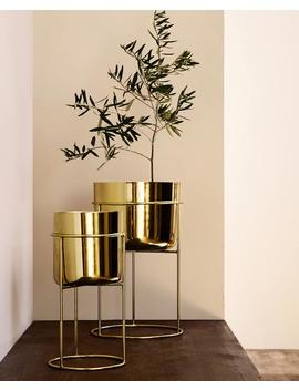 Gold Iron Flowerpot  Furniture   Living Room by Zara Home