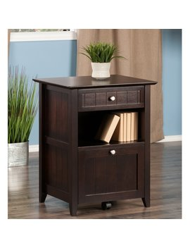 Bonanno 2 Drawer Vertical Filing Cabinet by Charlton Home