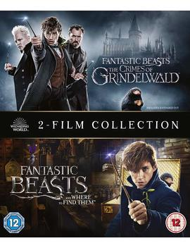 Fantastic Beasts: 2 Film Collection (Blu Ray) by Walmart