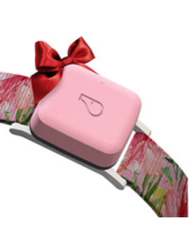 Whistle Go Explore / Twist & Go Collar / Small / Floral by Whistle