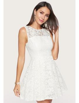 Embroidered Fit And Flare Dress by Bebe