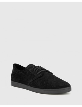 Alara Black Suede Leather Lace Up Sneaker by Wittner