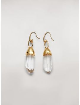 Transparent Stones Hook Earrings In Metal And Stone by Marni