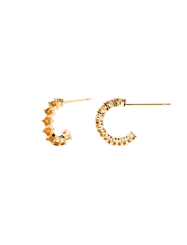 Yellow Bird Earrings by P D Paola