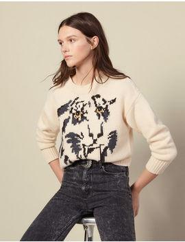 Sweater With Jacquard Tiger Motif by Sandro Paris