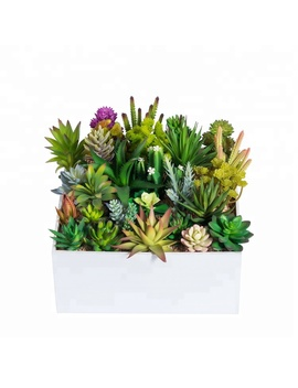 Wholesale Cheap Decorative Unpotted Diy Artificial Mini Succulents In Stock by Bf, Oem