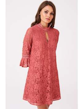 Little Mistress Helene Terracotta Lace Shift Dress by Little Mistress
