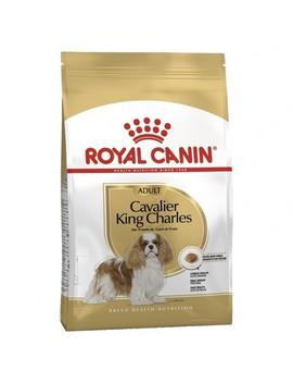 Royal Canin Cavalier King Charles Dog Food by Petbarn