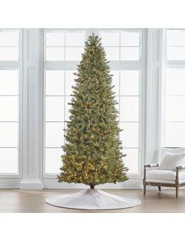 Douglas Fir 10' Slim Profile Tree by Frontgate