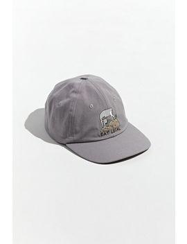 patagonia-eat-local-goat-baseball-hat by patagonia