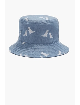 Dinosaur Bucket Hat by Country Road
