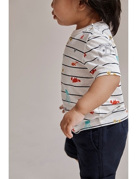 Ocean Stripe T Shirt by Country Road