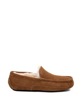 Mens Ugg® Ascot Slip On Casual Shoe   Chestnut by Ugg