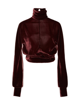 velvet-turtleneck-top by cushnie