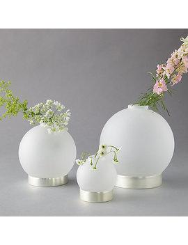 Brass Vase Ring Set by Terrain