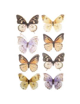 Butterfly 3 D Stickers by Hobby Lobby