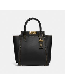 troupe-tote-16 by coach