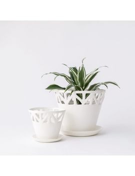 Convivial Ivory Tabletop Planter by West Elm