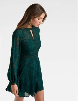 Sallie Embroidered Dress by Ever New